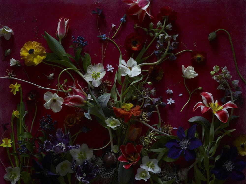 Spring_red.jpg