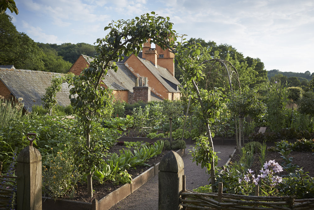 Allt-y-Bela vegetable garden