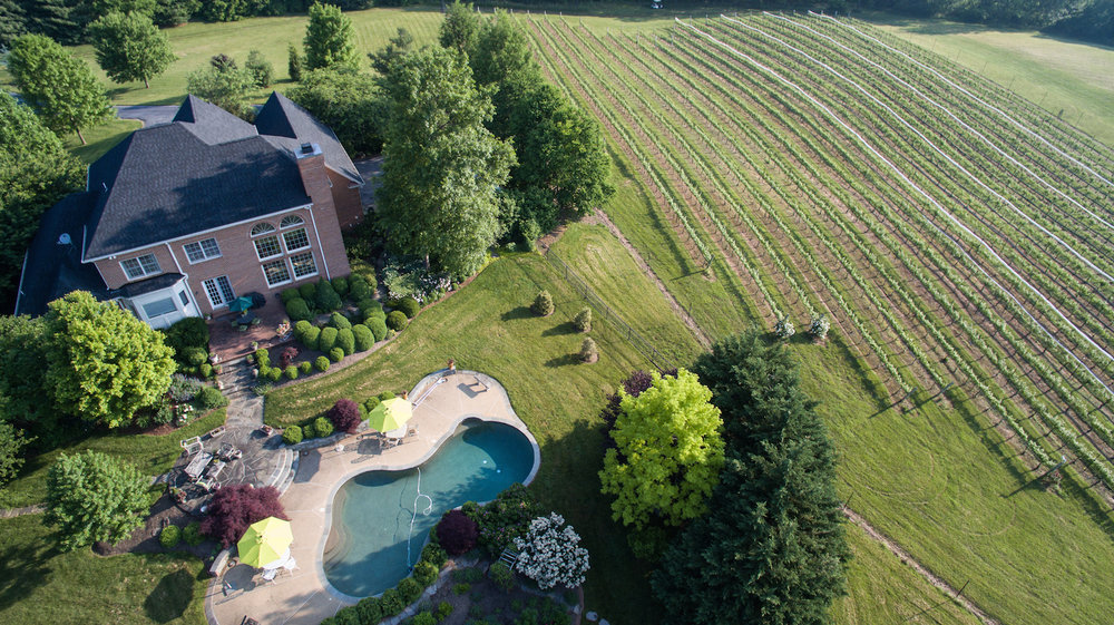 Vineyard Estate  SOLD