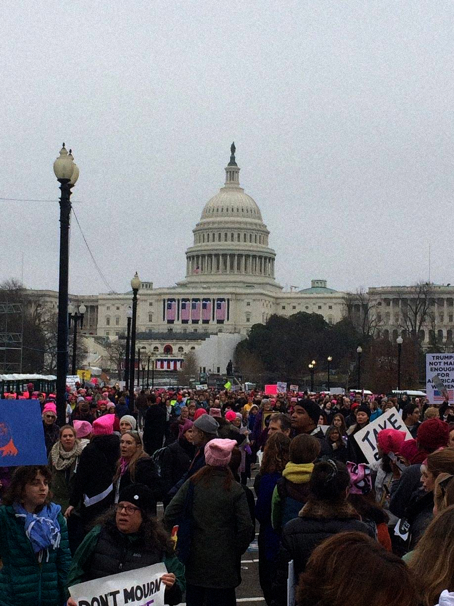 The  Women's March 2017