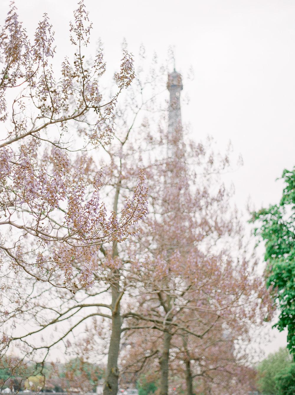 T&A_Paris-40.jpg