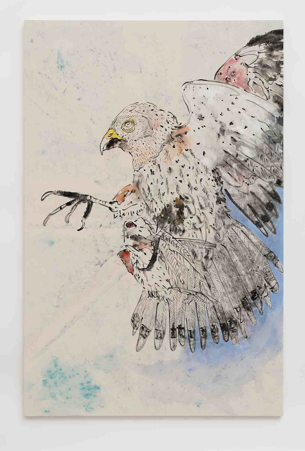 Old World Kestrel , 2016  ink, fabric dye, and watercolour on canvas