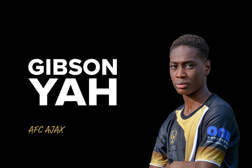 Gibsonwebsite.jpg
