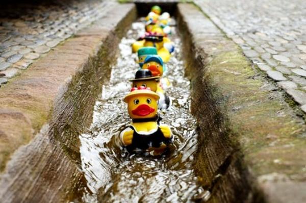 rubber-duck-bath-duck-toys-costume-106144 copia.jpg