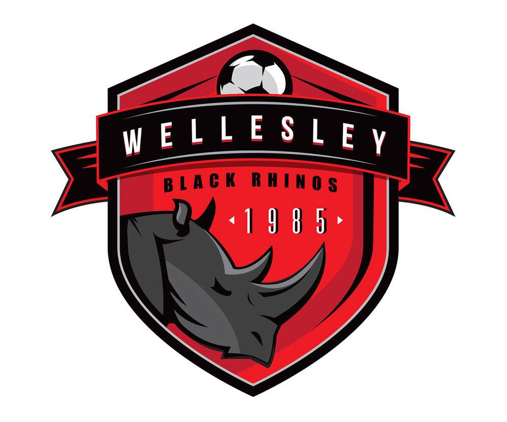 custom soccer logo design for wellesley black rhinos by jordan fretz design