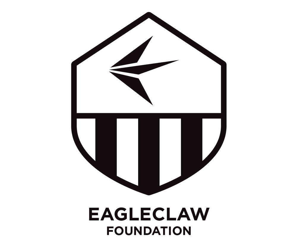 custom logo design for the eagleclaw soccer foundation by jordan fretz design