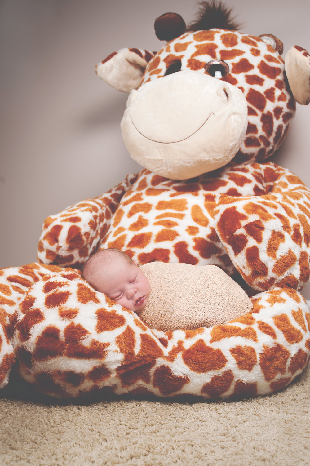 That has got to be THE biggest stuffed giraffe I've ever seen!