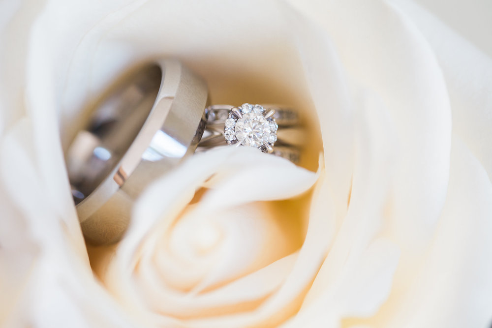 wedding website photos-wedding 5-0004.jpg