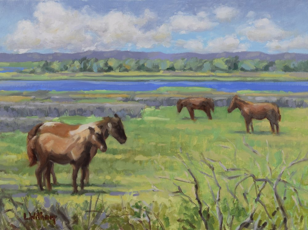 Assateague's Wild Ponies (2017)  Oil on linen, 12x16