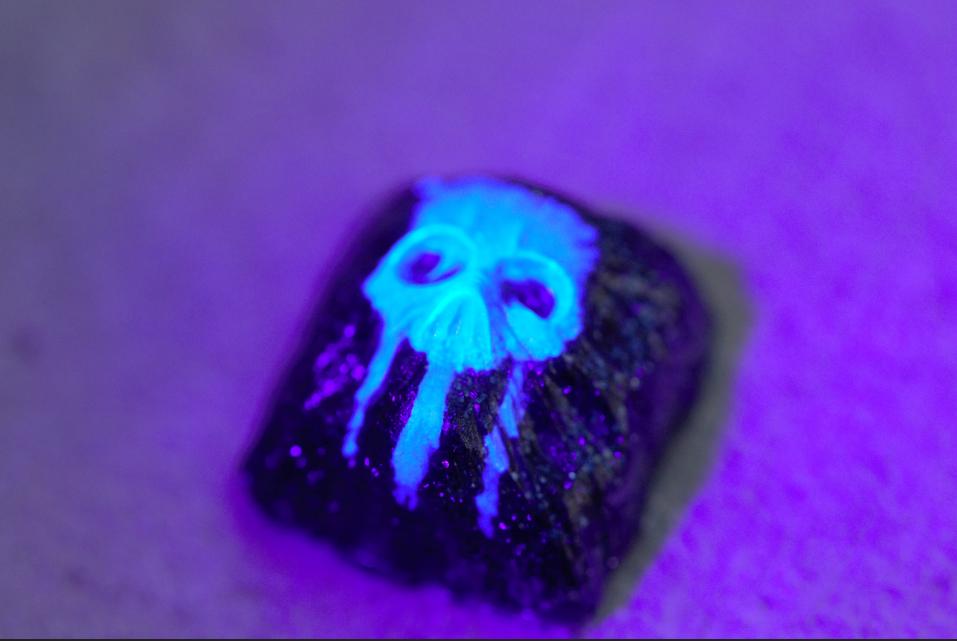 Nuka Quantum (Blacklight)