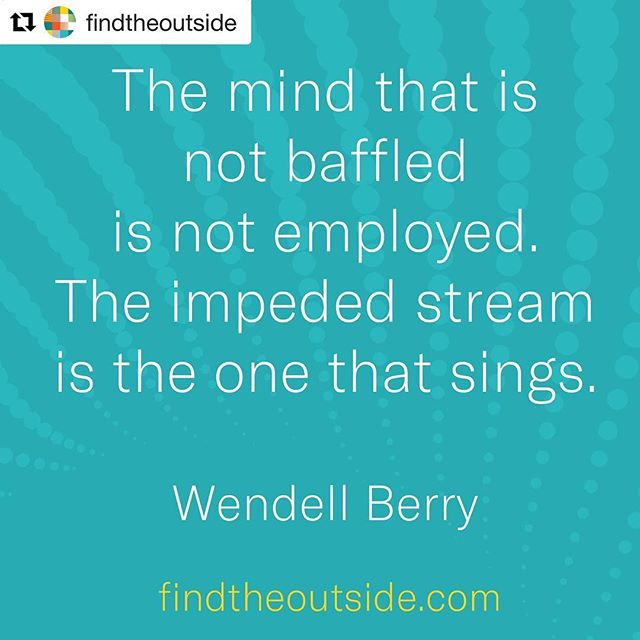 "#Repost @findtheoutside ・・・ Wendell Berry (born August 5, 1934) is an American novelist, poet, environmental activist, cultural critic, and farmer. ""According to him, the good life includes sustainable agriculture, appropriate technologies, healthy rural communities, connection to place, the pleasures of good food, husbandry, good work, local economics, the miracle of life, fidelity, frugality, reverence, and the interconnectedness of life. Author Rod Dreher writes that Berry's '...unshakable devotion to the land, to localism, and to the dignity of traditional life makes him both a great American and, to the disgrace of our age, a prophet without honor in his native land.'"" —Wikipedia  #whywework #equity #systemschange #kindredspirits #freshair #thereisalwaysaway"