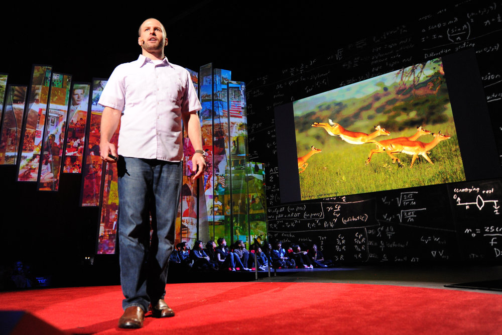 TED2012Finches.jpg