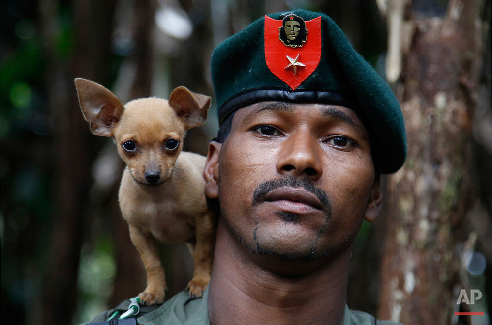 In this Aug. 13, 2016 photo, a rebel soldier of the 48th Front of the Revolutionary Armed Forces of Colombia, or FARC, poses for a photo with his dog in the southern jungles of Putumayo, Colombia. As the country's half-century conflict winds down, with the signing of a peace deal with the Government perhaps just days away, thousands of FARC rebels are emerging from their hideouts and preparing for a life without arms. (AP Photo/Fernando Vergara)