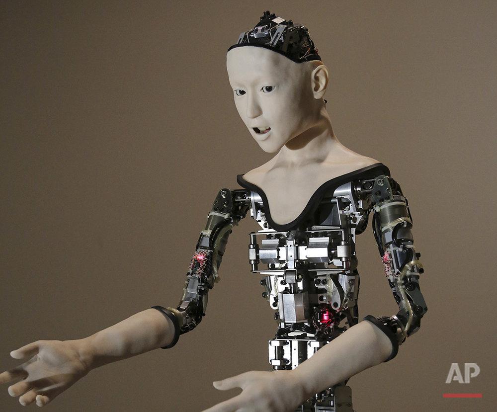 Japan Humanoid Robot