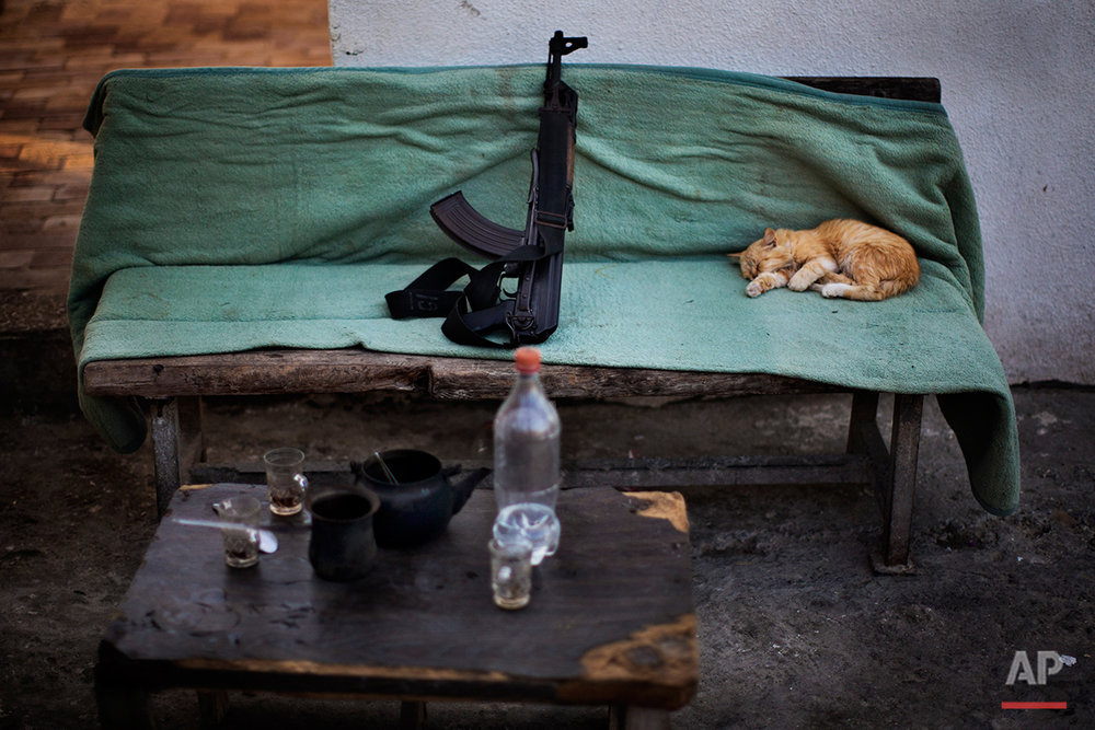 A cat sleeps next a Kalashnikov weapon  on a Hamas security check point in Gaza City, Tuesday, Oct. 30, 2012. (AP Photo/Bernat Armangue)