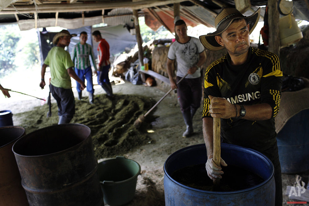 Colombia Coca Paste Photo Gallery
