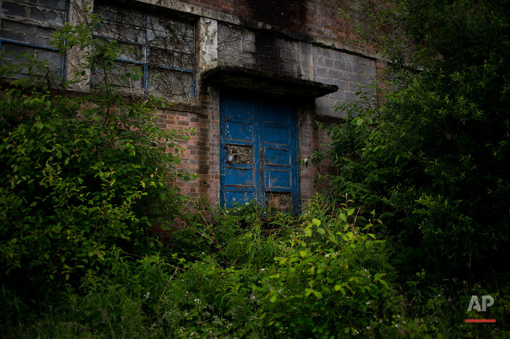 In this Thursday, June 30, 2016 photo, one of the entrances to the Penallta colliery facilities is covered by vegetation in Hengoed, South Wales.  (AP Photo/Emilio Morenatti)