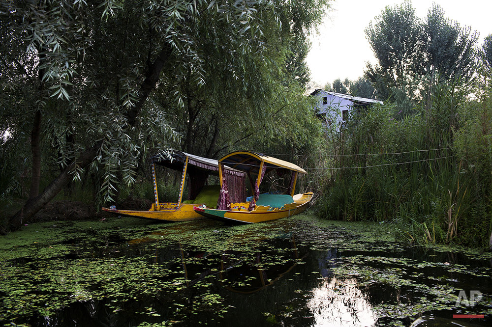 In this July 25, 2016 photo, Sikharas are berthed on the Dal lake in Srinagar, India-controlled Kashmir. In many ways, the lake offers a barometer for the political situation in Kashmir. If the wooden boats, known as Shikaras, are not out on the water and if music isn't floating from the houseboats, then it probably means yet another cycle of violence has come to Kashmir. (AP Photo/Bernat Armangue)
