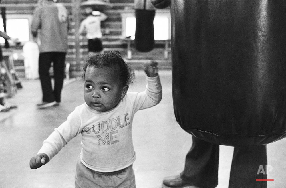 Daughter Hannah keeps her eyes on daddy, better known to the world as Muhammad Ali, while she tries a few taps on the bag at Deer Lake, Pa. on Monday, Sept. 13, 1977, where the world champion heavyweight boxer is preparing for his title defense against Earnie Shavers.   Meanwhile, Ali was hard at work  on a bag of his own. (AP Photo/Marty Lederhandler)