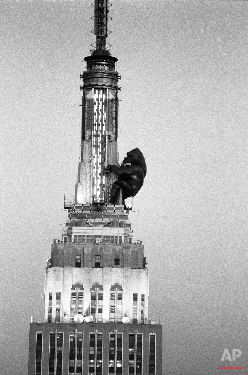 "As day turns to dusk in New York City, an 84-foot balloon of King Kong clings to the top of the Empire State Building, April 13, 1983.  It was inflated by workmen from the Robert Keith Company of San Diego to celebrate the 50th anniversary of the original  ""King Kong"" movie.  (AP Photo/G. Paul Burnett)"