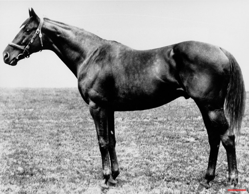 This is a 1919 photo of thoroughbred Sir Barton, winner of the 44th running of the Kentucky Derby, at Churhill Downs on the first Saturday in May 1919. Sir Barton, foaled at Hamburg Place, Lexington, Ky., was the first Triple Crown winner in 1916.  (AP Photo)