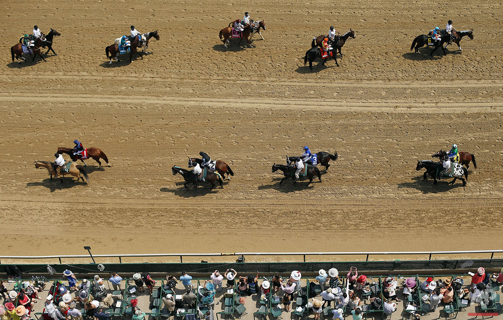 Horses are paraded in a race before the 141st running of the Kentucky Derby horse race at Churchill Downs, Saturday, May 2, 2015, in Louisville, Ky. (AP Photo/Charlie Riedel)