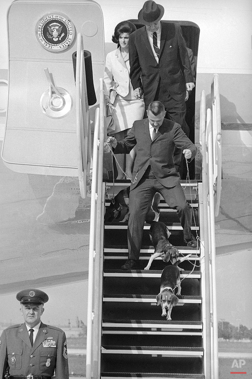 As  President Lyndon Johnson and his family leave their plane, shown at top of ramp, a Secret Service agent disentangle the three White House beagles, Kimberly, Freckles and Him, that accompanied the president on his trip to the LBJ Ranch for the Easter holidays, April 1966. The party landed at Randolph Air Force Base and boarded a smaller jet for the short flight to the ranch. (AP Photo/Ted Powers)