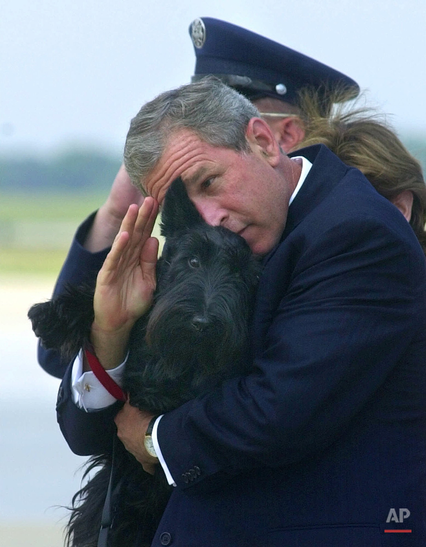 In this June 25, 2001 photo, President Bush does his best to salute while holding his dog Barney as they get off of Air Force One at Andrews Air Force Base, Md. Barney, former White House Scottish Terrier and star of holiday videos shot during President George W. Bush's administration, has died after suffering from cancer. He was 12. (AP Photo/Susan Walsh)