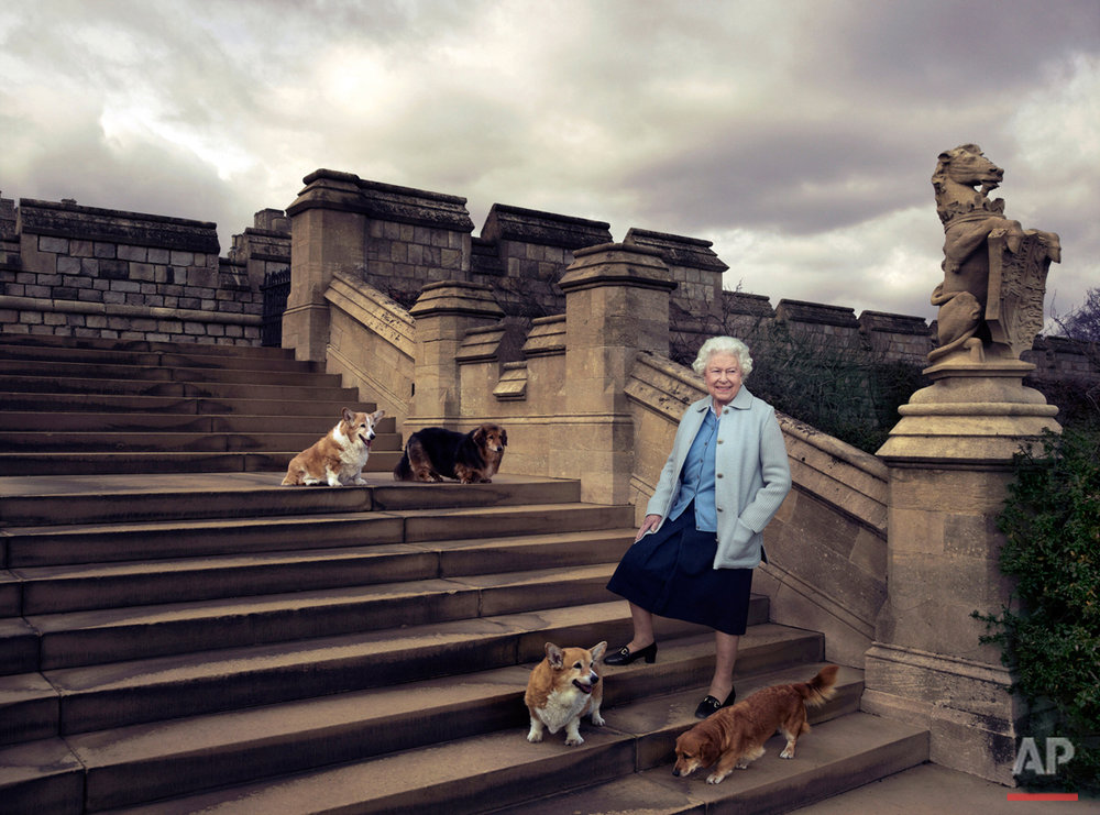 In this official photograph released by Buckingham Palace Wednesday April 20, 2016 to mark her 90th birthday, Queen Elizabeth II is seen walking in the private grounds of Windsor Castle, in England, on steps at the rear of the East Terrace and East Garden with four of her dogs: clockwise from top left Willow (corgi), Vulcan (dorgie), Candy (dorgie) and Holly (corgi). (© 2016 Annie Leibovitz via AP)