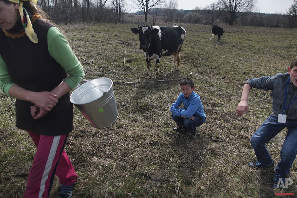 In this photo taken on Tuesday, April  5, 2016, Viktoria Vetrova, with her children, Bogdan, center, and Kolya, right, goes home after milking a cow in Zalyshany, 53 km (32 miles) southwest of the destroyed reactor of the Chernobyl plant, Ukraine. Viktoria Vetrova, a housewife, keeps two cows in order to help feed her four children. Vetrova's 8-year-old son Bogdan suffers from an enlarged thyroid, a condition which studies have linked to radioactivity. (AP Photo/Mstyslav Chernov)