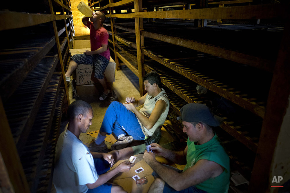 "In this March 1, 2016 photo, workers play cards during their lunch break between drying tobacco leaves at a warehouse in the province of Pinar del Rio, Cuba. The leaves are brought here to ""breath"" after being previously dipped in ammonium and water, and dried for at least two months. Depending on the leaf, tobacco is left to ""breath"" in a dark space from anywhere between two months to several years. (AP Photo/Ramon Espinosa)"