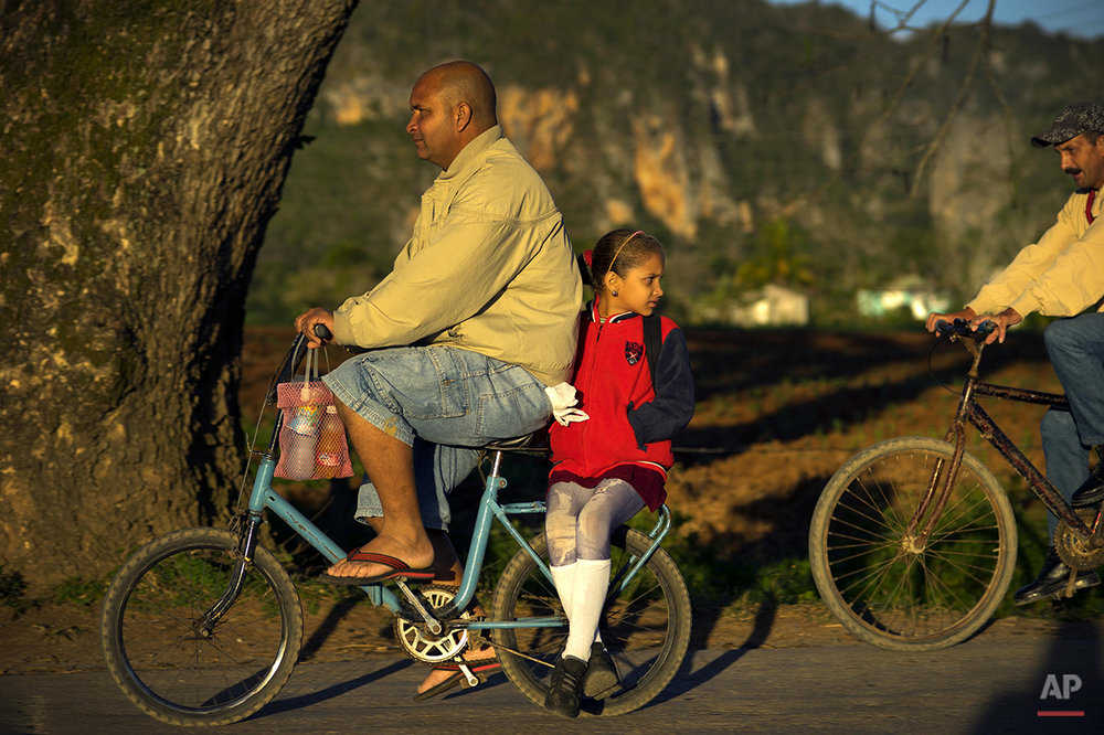 In this Feb. 26, 2016 photo, a man gives a girl a ride to school on the back of his bicycle in Vinales in the province of Pinar del Rio, Cuba, where tobacco is the main crop. Despite the flood of visitors since Cuba and the U.S. reestablished relations, some aspects of life in the province's central Vinales valley have changed little.  (AP Photo/Ramon Espinosa)