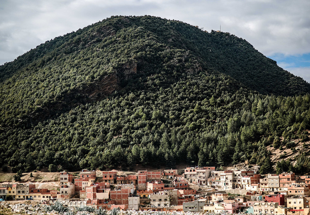 In this Saturday, Feb. 6, 2016 photo, Amazigh houses sit in the foothills of Cedar trees forests, in Azrou, a town south of Fez. Deep in Morocco's Atlas Mountains, the ancient Berbers live on, defying a harsh environment and loyal to their traditions and way of life in some of the most hard-to-reach parts of the African continent. (AP Photo/Mosa'ab Elshamy)
