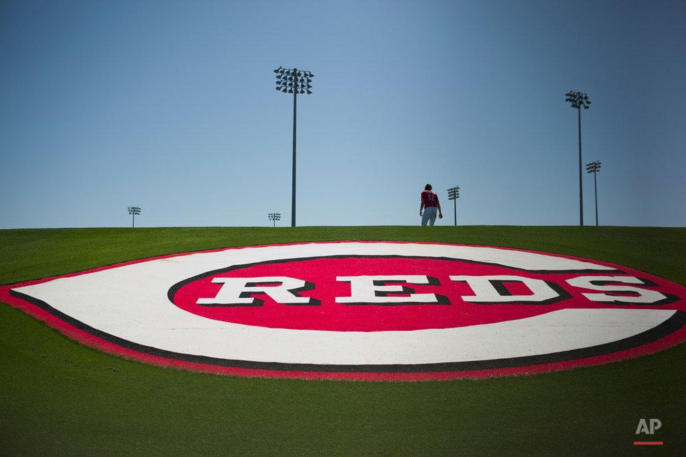 Rockies Reds Spring Baseball