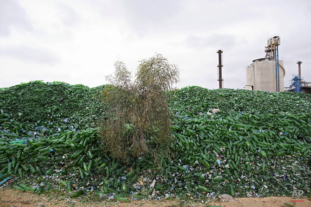 In this Tuesday, Jan. 26, 2016 photo, broken glass bottles are piled up later to be recycled at the Phoenicia Glass Works Ltd. factory in the southern Israeli town of Yeruham. Tiny shards, millions of them, are piled into rolling hills of green and brown. They are 50 feet high and span the length of a few soccer fields. This is the junkyard at Israel's only glass container factory, where broken glass awaits a new life. (AP Photo/Oded Balilty)