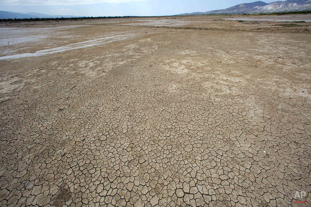 This Feb. 20, 2016 photo shows the dry, cracked lakebed of Trou Caiman, in Croix-des-Bouquets, Haiti. A drought worsened by the El Nino weather phenomenon has driven Haitians who were already barely getting by on marginal farmland deeper into misery. An estimated 1.5 million people are going hungry as crop yields fall to lowest levels in 35 years in a country where two-thirds of people eke out a living from agriculture. (AP Photo/Dieu Nalio Chery)