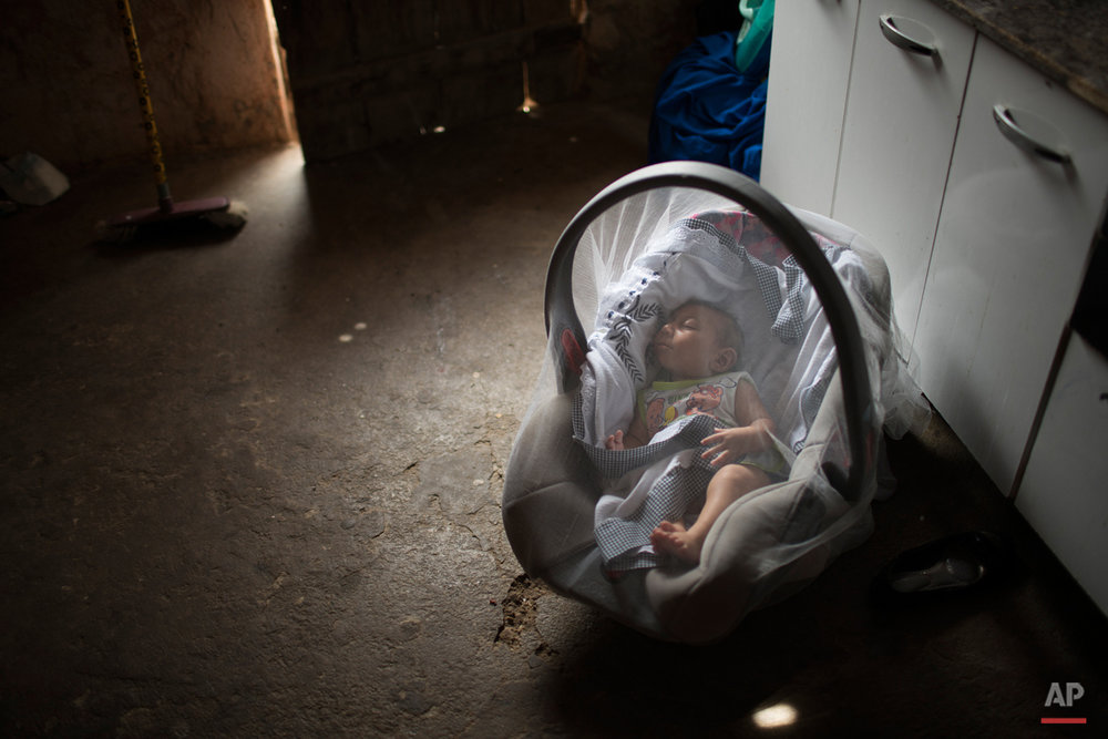 In this Dec. 23, 2015 photo, Jose Wesley sleeps covered by a mosquito net in Poco Fundo, Pernambuco state, Brazil. Jose Wesleyís mother Solange Ferreira had never heard of microcephaly before her youngest son was diagnosed a couple of days after his birth. (AP Photo/Felipe Dana)