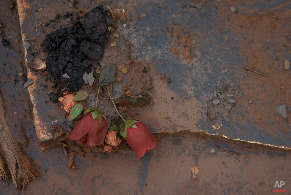 In this Nov. 23, 2015 photo, artificial rose buds lie in muddy debris, in the hamlet of Bento Rodrigues, Brazil. The village, in the central state of Minas Gerais, was home to about 600 people until the disaster hit. (AP Photo/Leo Correa)