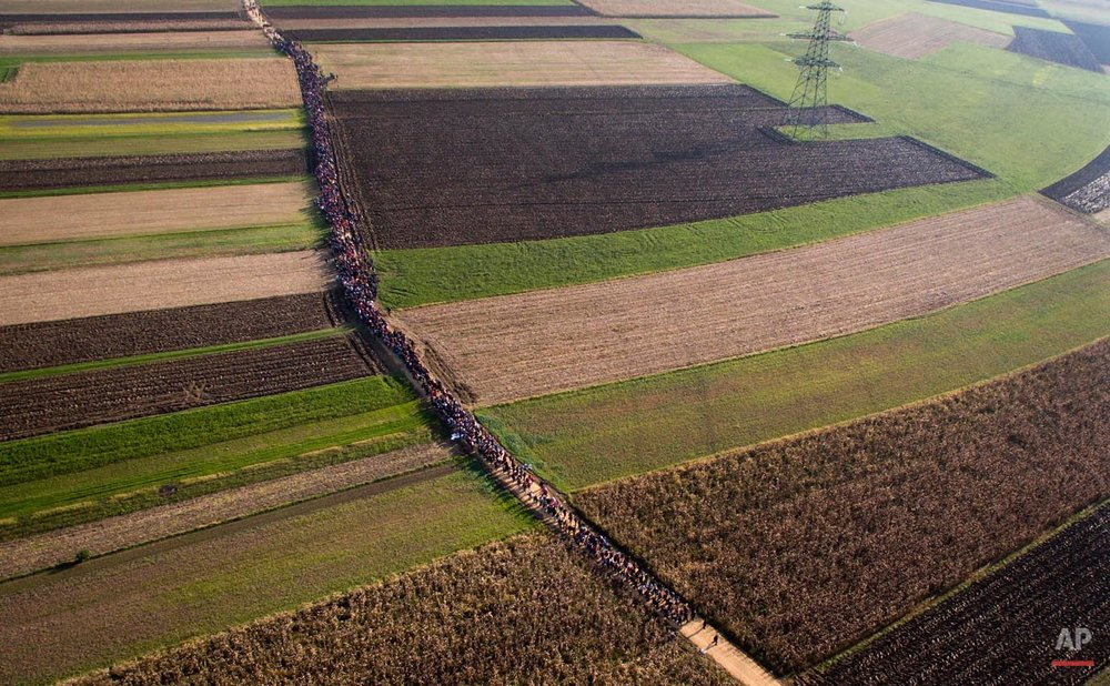 In this aerial view photo, a column of migrants moves through fields after crossing from Croatia, in Rigonce, Slovenia, Sunday, Oct. 25, 2015. Thousands of people are trying to reach central and northern Europe via the Balkans, but often have to wait for days in mud and rain at the Serbian, Croatian and Slovenian borders. (AP Photo/Darko Bandic)
