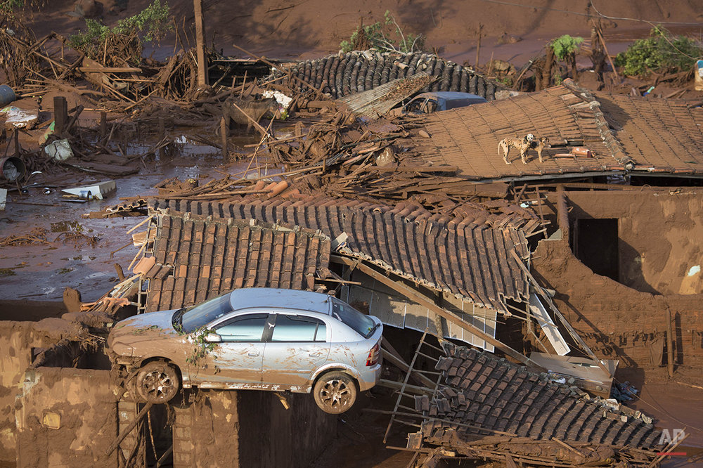 A car and two dogs are seen on the roof of destroyed houses at the small town of Bento Rodrigues after a dam burst on Thursday in Minas Gerais state, Brazil, Friday, Nov. 6, 2015. (AP Photo/Felipe Dana)