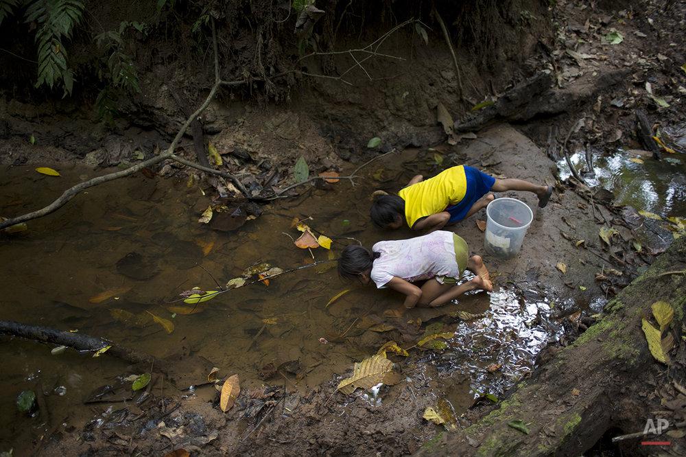 Peru Coca Eradicators Photo Gallery