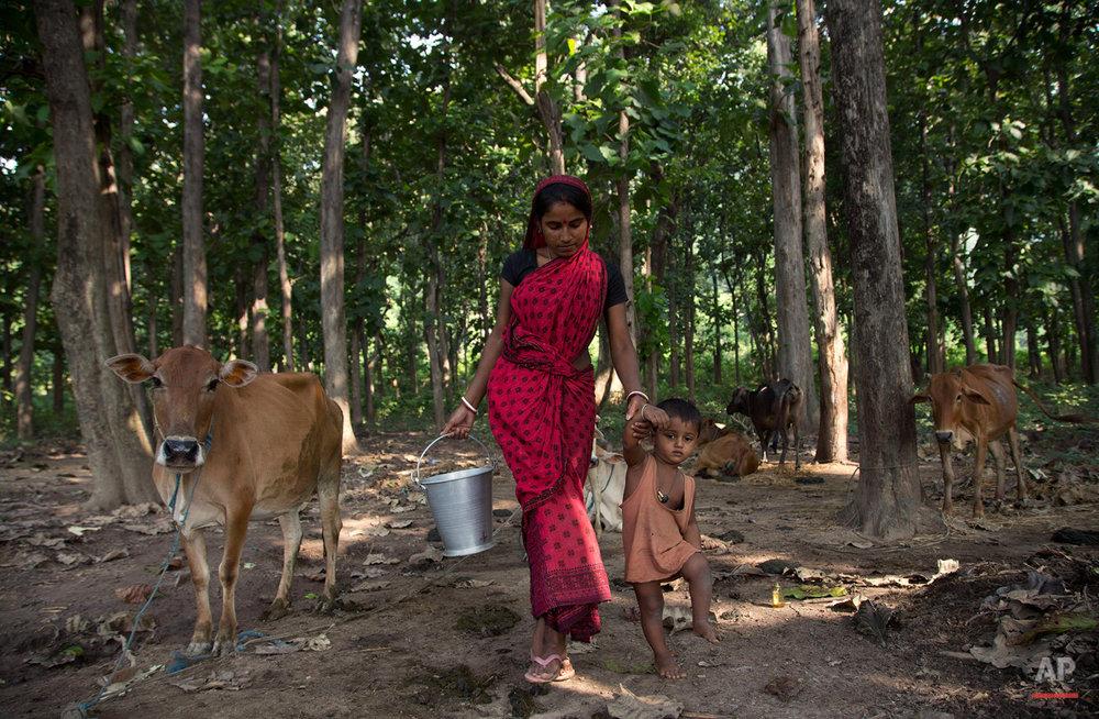 India Milk Everywhere Photo Gallery