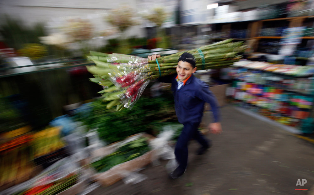 Flower salesman Nelson Calderon carries a package of ginger flowers at the Paloquemao market in Bogota, Colombia, Wednesday, Aug. 19, 2015. Flower growers expect the sliding of the Colombian peso, which has dropped to the lowest level in more than a decade, will help make their product more competitive. Colombia is one of the biggest exporters of flowers in the world. (AP Photo/Fernando Vergara)