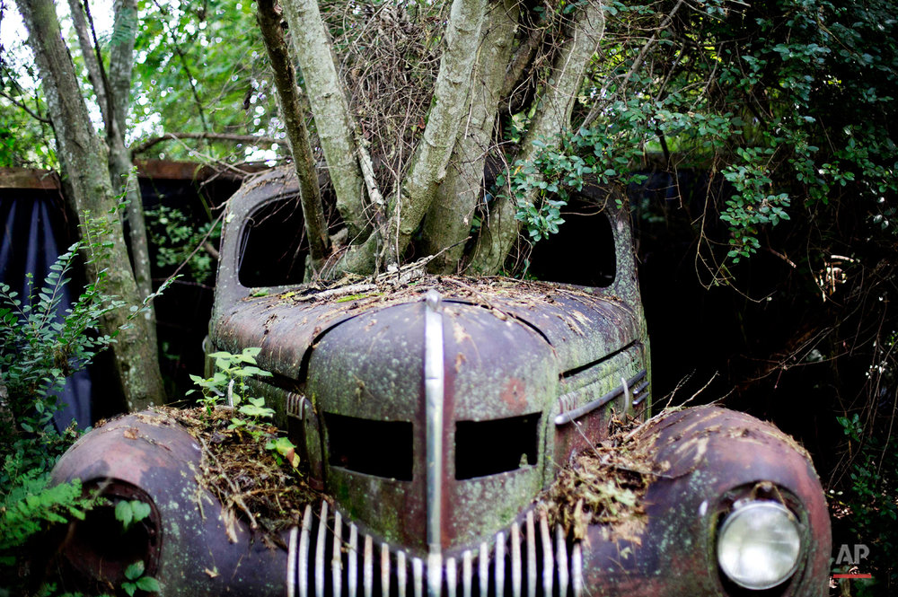 APTOPIX Classic Car Junkyard Photo Gallery