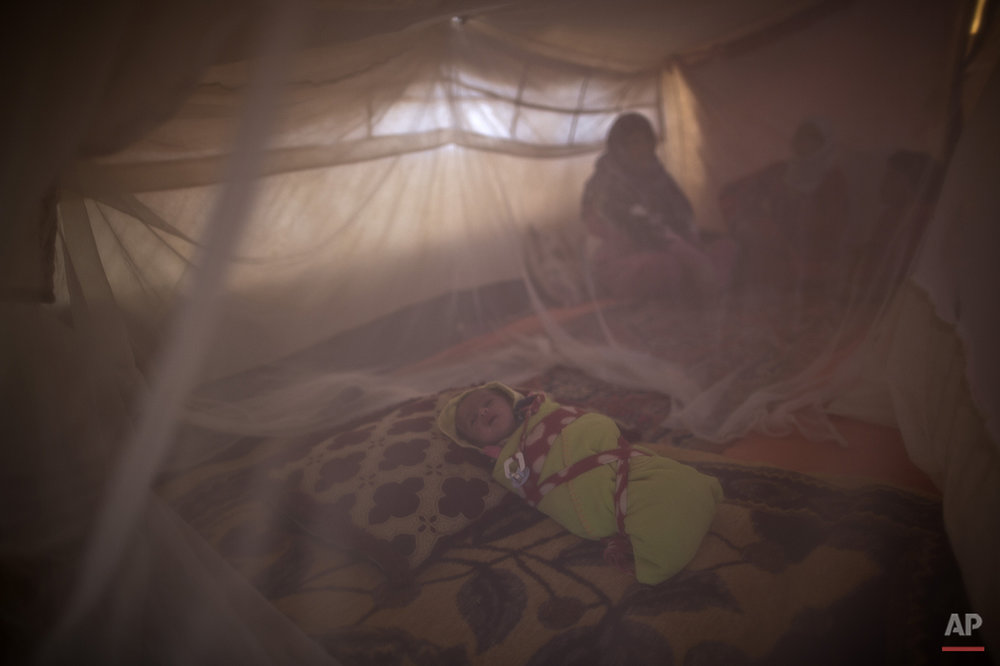 In this Sunday, July 26, 2015 photo, Syrian refugee infant Mohammed Ali, 43 days, sleeps inside a mosquito net at his family's tent at an informal tented settlement near the Syrian border on the outskirts of Mafraq, Jordan. Of the 4 million refugees who fled Syria's grinding civil war, it is the conflict's youngest exiles who often bear the brunt of its woes. (AP Photo/Muhammed Muheisen)