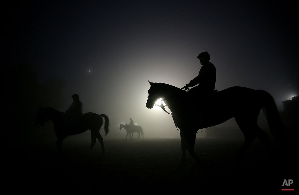 Exercise riders walk their horses during training sessions for the Breeders' Cup at Santa Anita Park in Arcadia, Calif., Wednesday, Oct. 31, 2012. (AP Photo/Jae C. Hong)