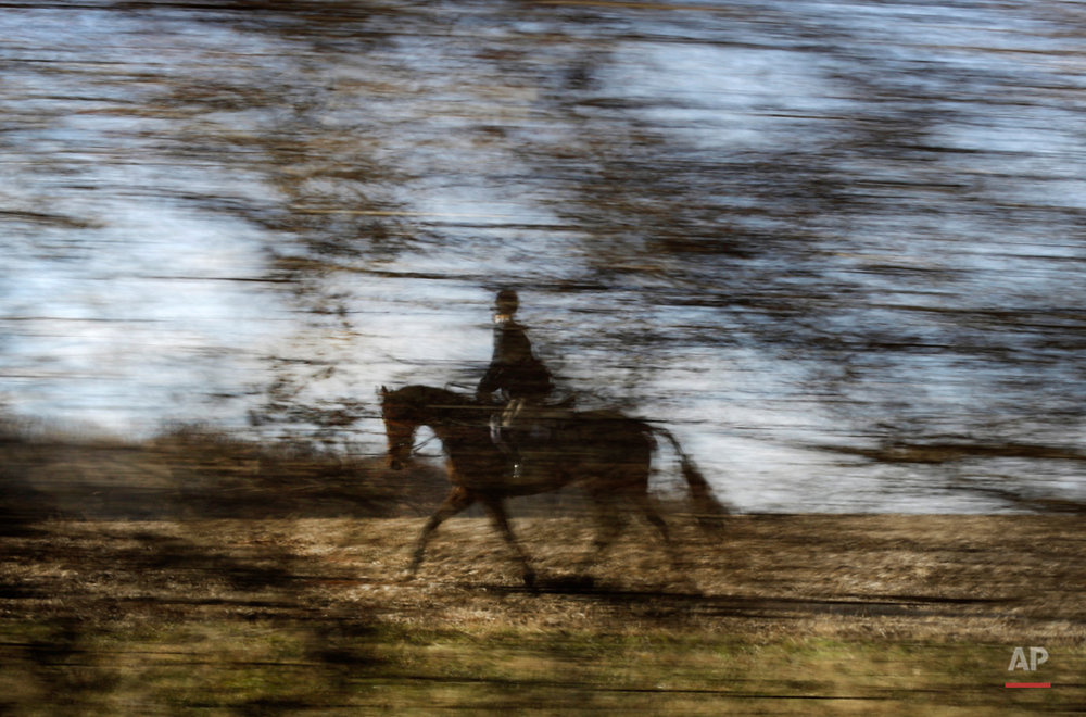 APTOPIX US Fox Hunting Photo Essay