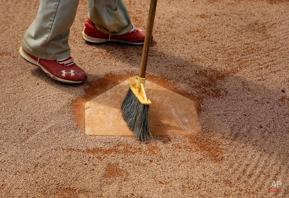Cardinals Spring Baseball