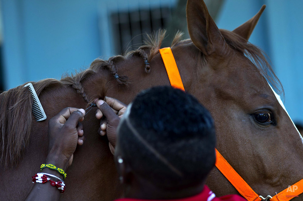 Cuba Horse Business Photo Essay