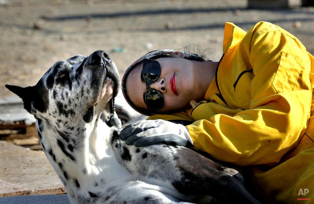 APTOPIX Mideast Iran Dog Shelter